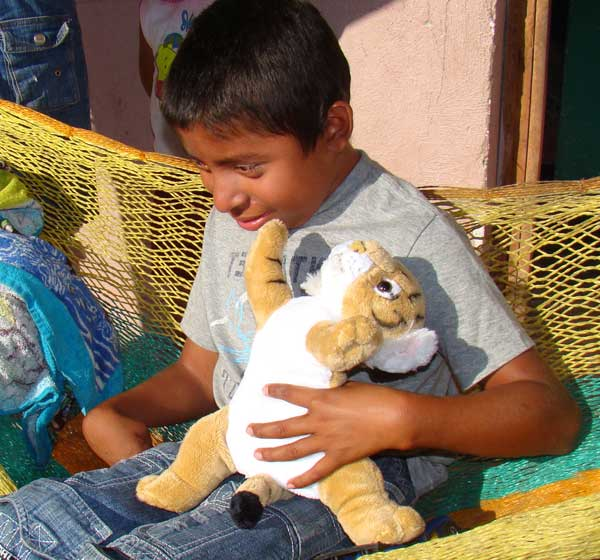 Blind Boy with Tiger Wildlife STORYTELLER